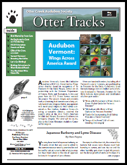 Otter-Tracks_May13