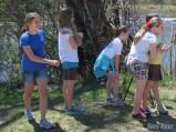 Scoping an Osprey nest