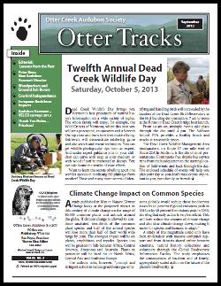 9-13_otter_tracks