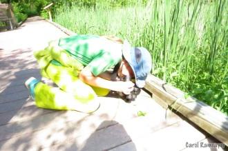 Reversing binoculars to look at a beetle