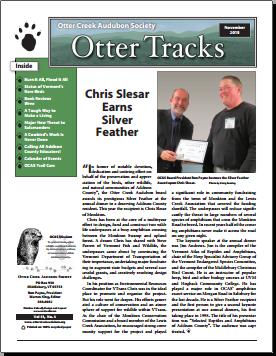 Otter-Tracks_Nov15