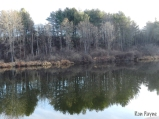 Glassy water of the Otter Creek