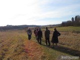 Low sun at the Hurd Grassland
