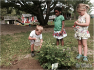 Quarry Hill pre-schoolers care for bird-friendly plantings that were purchased with grant funds.