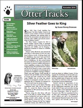 otter-tracks_nov16