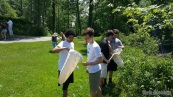 Tenth graders from Middlebury Union High School conducted an insect diversity study near their school.