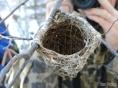 Inside the nest
