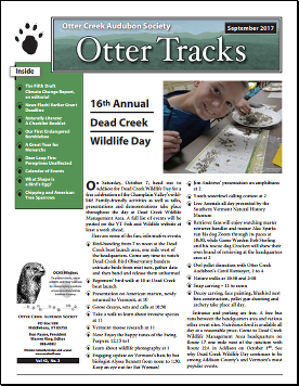 otter-tracks_nov16