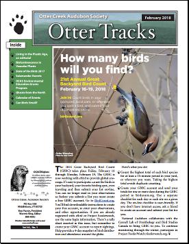 Otter-Tracks_Feb18
