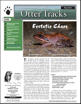 Otter-Tracks_May18