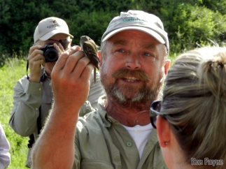 Mark Labarr with an Empidonax Flycatcher