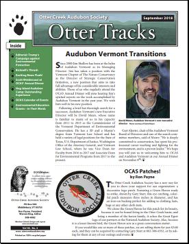 Otter-Tracks_Sept18