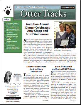 Otter-Tracks_Nov18