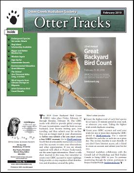 otter-tracks_feb19