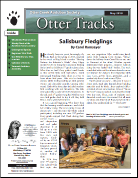 otter-tracks_may19